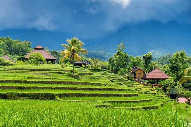 bali-indonesia[dot]com